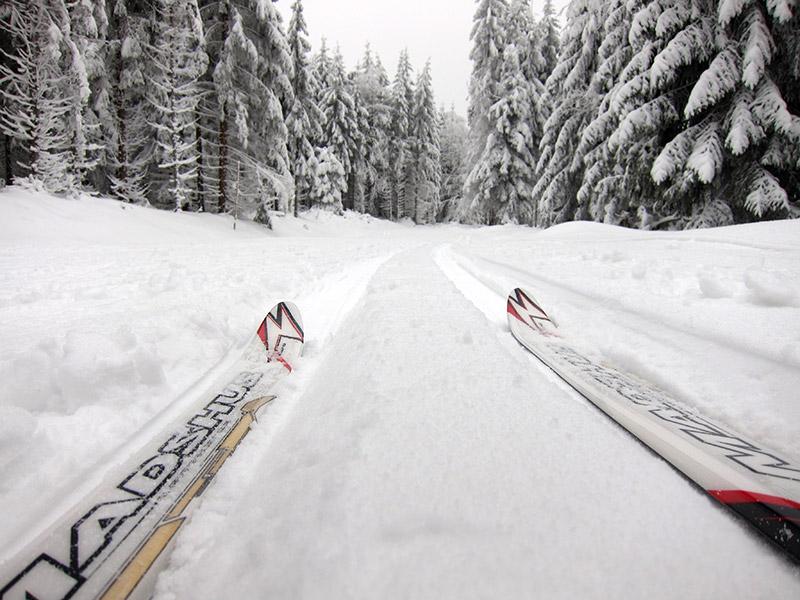 narciarstwo_biegowe_06_duze