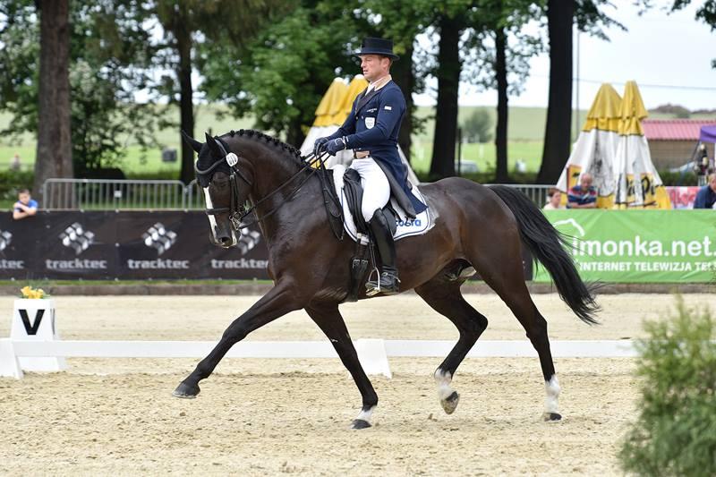 strzegom horse trials