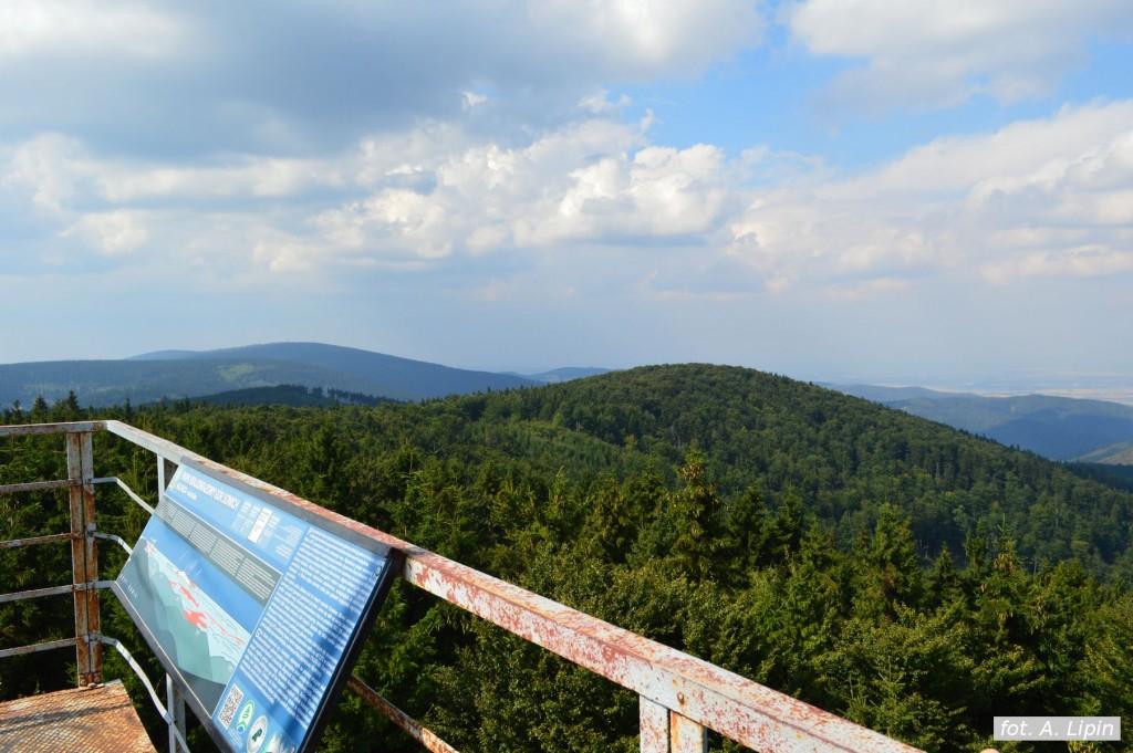 Widok z wieży na Kalenicy na północny zachód: Słoneczna i Wielka Sowa (fot. A. Lipin)
