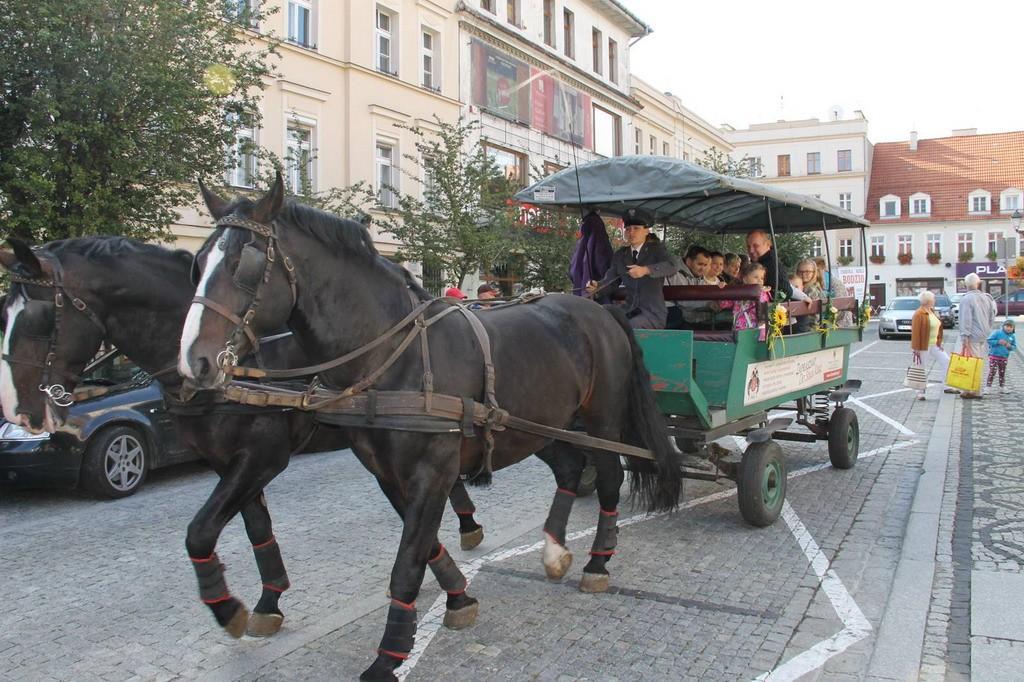 tramwaj konny 2